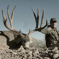 Giant-Mule-Deer-Utah